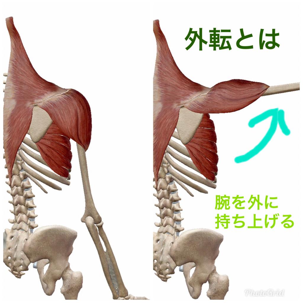 f:id:naoki-osugi:20171208111805j:plain