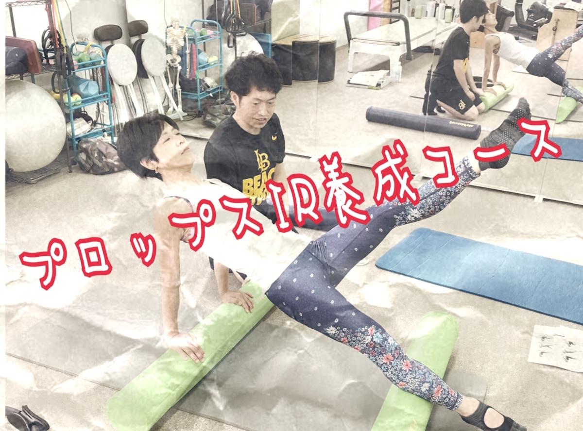 f:id:naoki-osugi:20190816143951j:plain