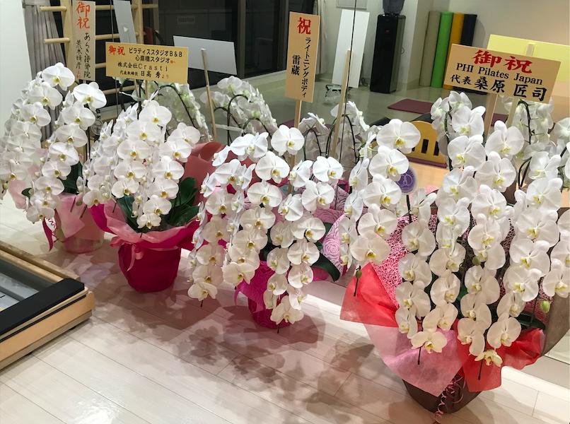 f:id:naoki-osugi:20190903004342p:plain
