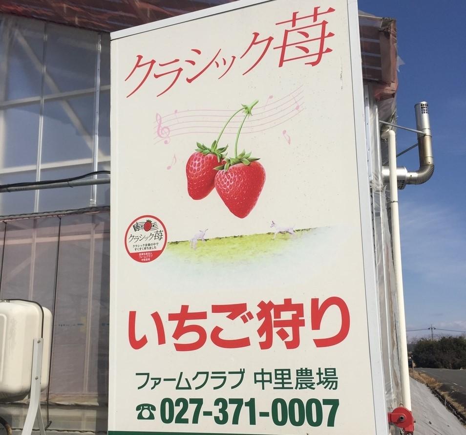f:id:naoki0607:20190801001742j:plain