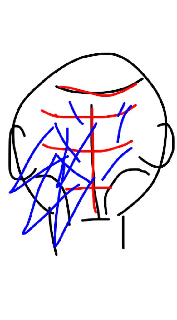 f:id:naoki1221:20190424231013p:image