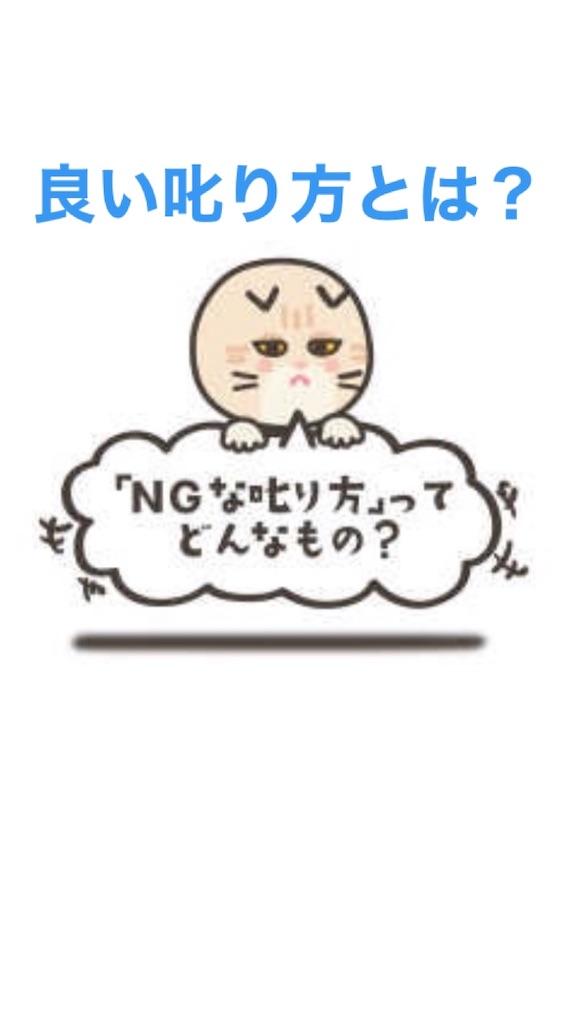 f:id:naoki3244:20200121073730j:image