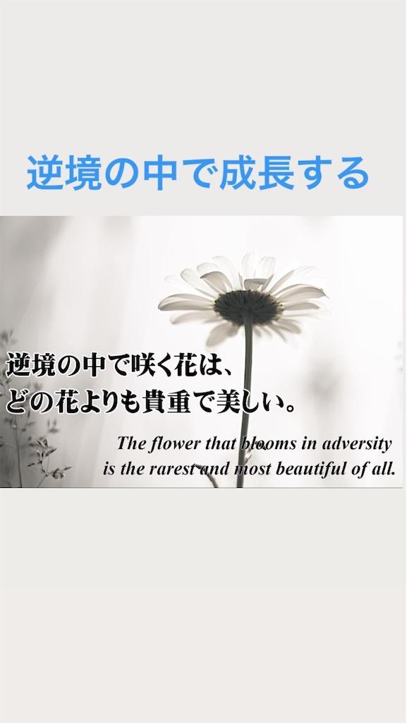f:id:naoki3244:20200812070309j:image