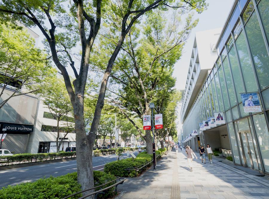 f:id:naoko-moriyama:20180901232551j:plain