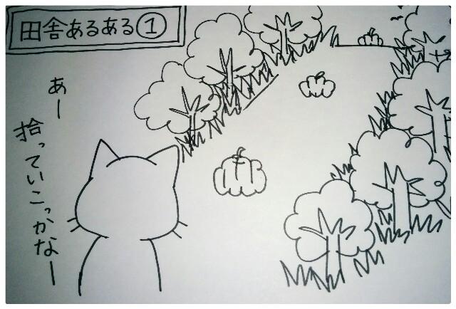 f:id:naoko-ushiki:20160828001306j:image