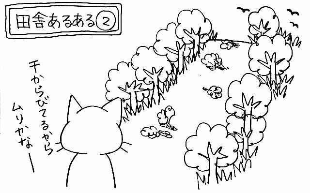 f:id:naoko-ushiki:20160828235842j:image