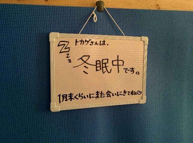 f:id:naoko-ushiki:20170107174925j:image