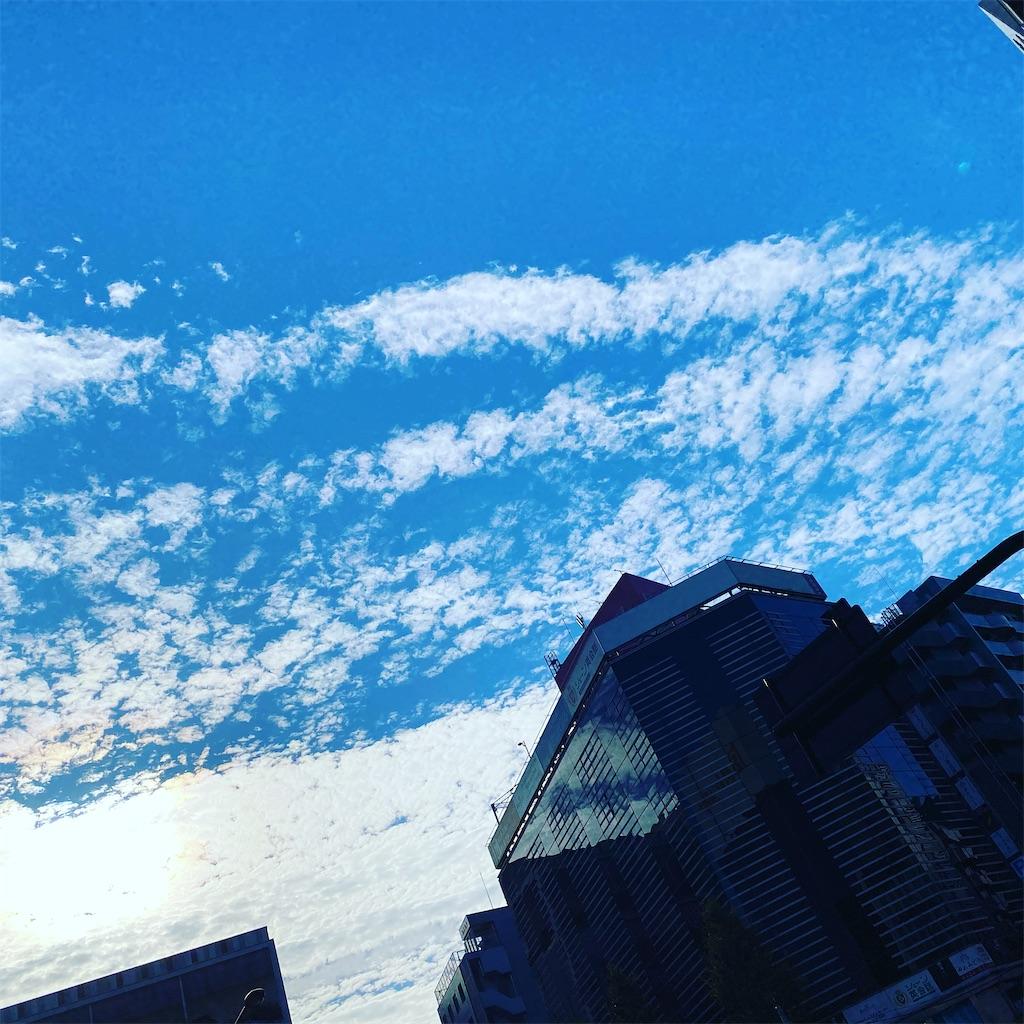 f:id:naokocoro:20201205202617j:image