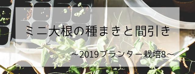 f:id:naosann:20191025160539j:plain