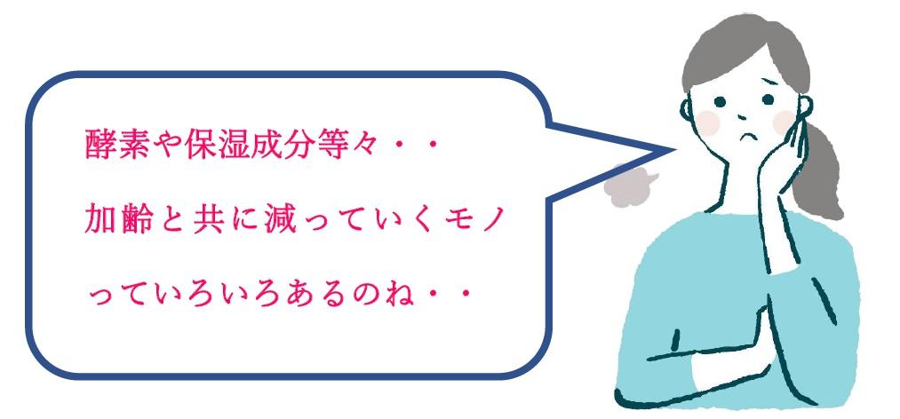 f:id:naoshikarelax:20210527223742j:plain