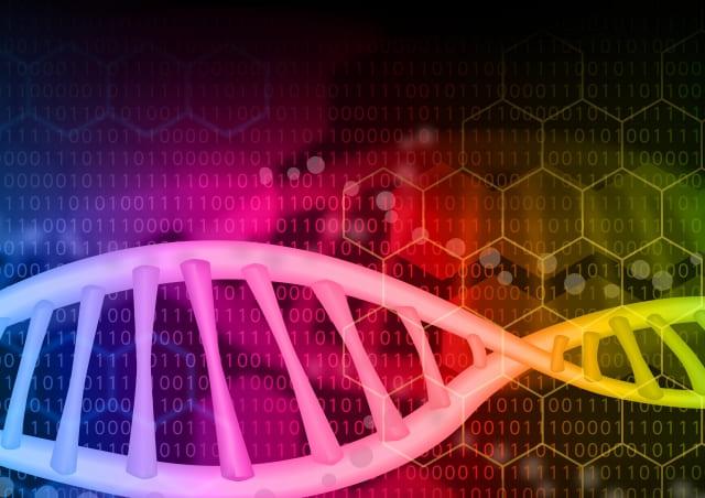 ゲノムDNAの画像