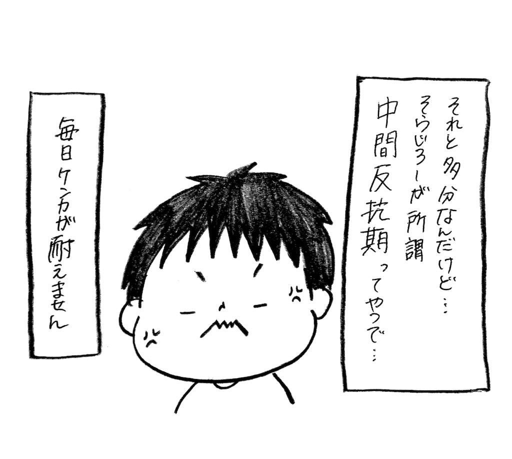 f:id:naotarotarou:20180830015029j:image
