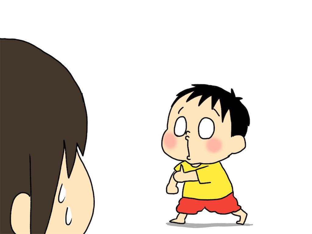 f:id:naotarotarou:20190428082906j:image