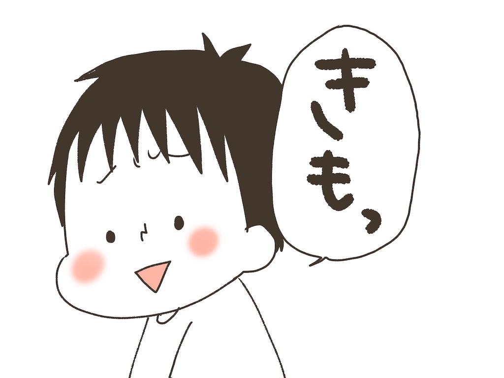 f:id:naotarotarou:20190514125412j:image