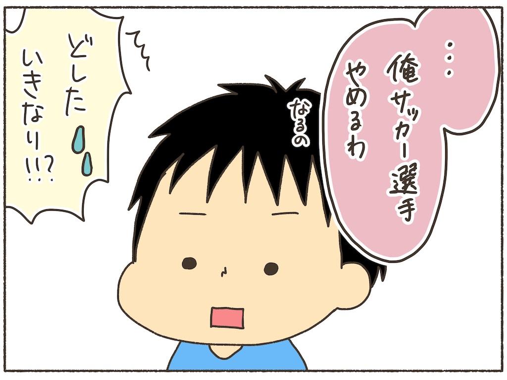 f:id:naotarotarou:20190613120412j:image