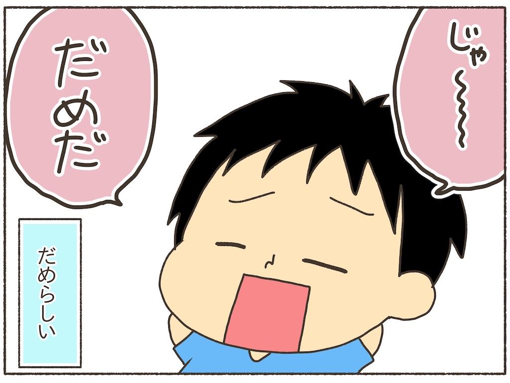 f:id:naotarotarou:20190613120445j:image