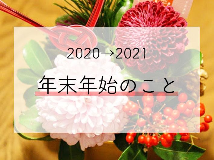 f:id:naotet:20210106113213j:plain