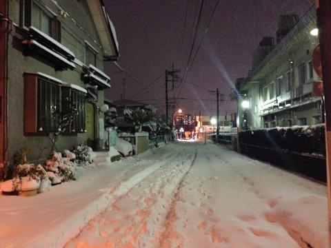 20140208yuki.jpg