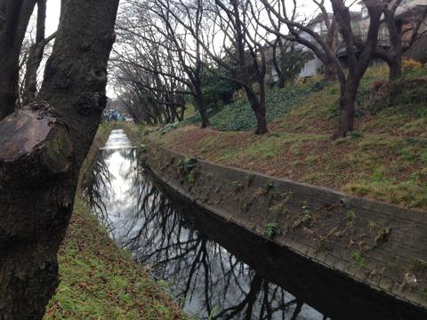 20131223hikidigawa.jpg
