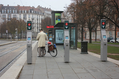 20111113strusbourbike.jpg