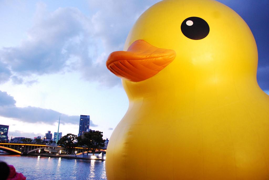 rubber duck naoyaのはてなダイアリー