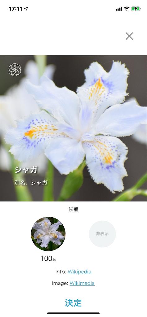 f:id:naoyafs1:20210401174632p:image