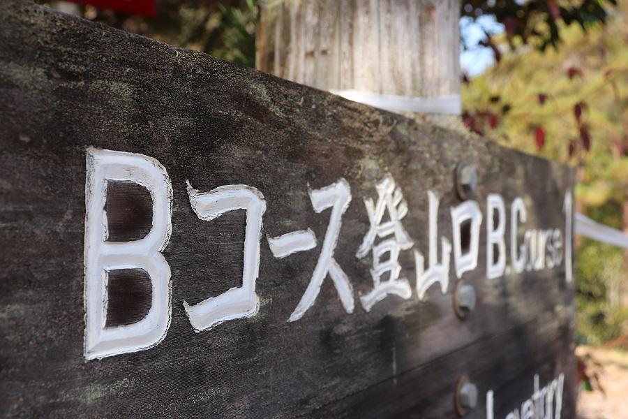 f:id:naoyukij9:20201115151617j:plain