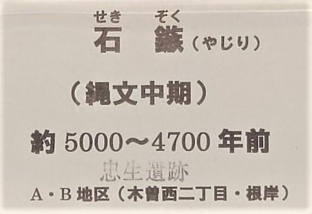 f:id:naozi:20201114204123j:plain