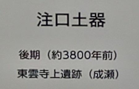 f:id:naozi:20201114204943j:plain