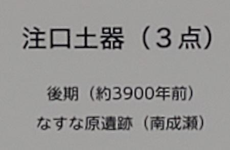 f:id:naozi:20201114205035j:plain