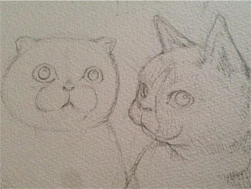 猫イラスト下描き