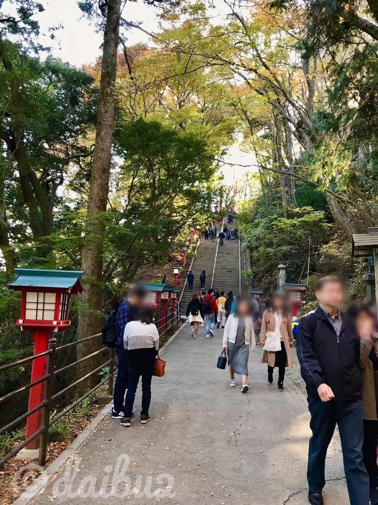 f:id:nara-daibu2:20181126003632j:plain