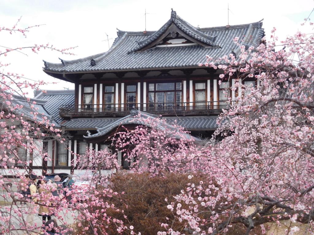 f:id:naradaisukikurabu:20180206092331j:plain