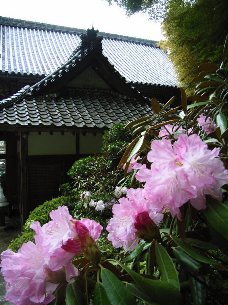 f:id:naradaisukikurabu:20180330170745j:plain