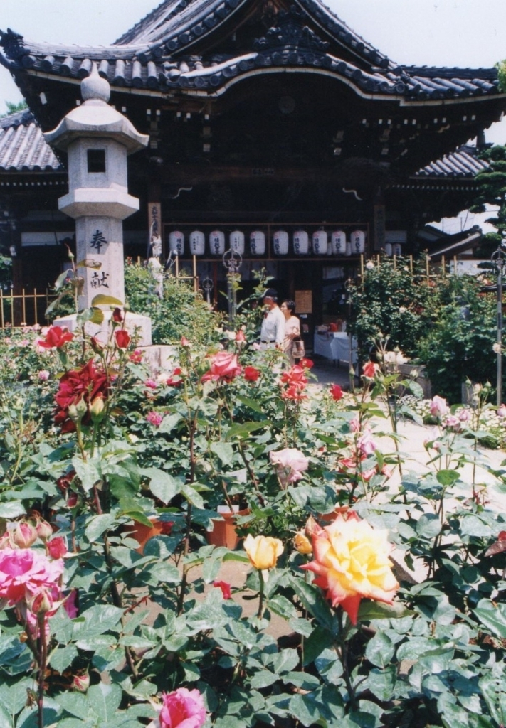 f:id:naradaisukikurabu:20180330175956j:plain