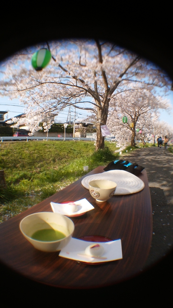 f:id:naradaisukikurabu:20180401075712j:plain