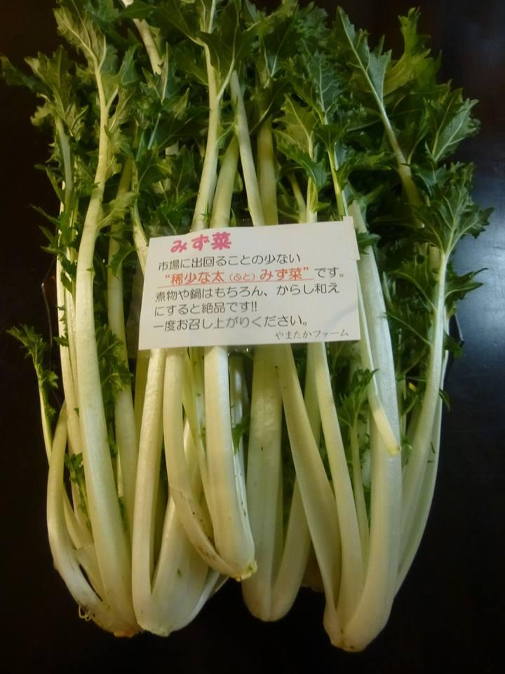 f:id:naradaisukikurabu:20181115092121j:plain