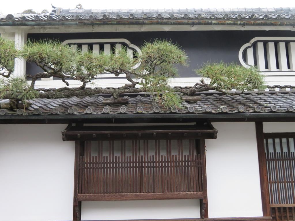 f:id:naradaisukikurabu:20181230155326j:plain