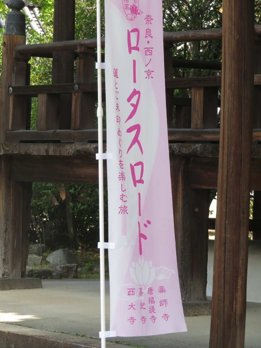 f:id:naradaisukikurabu:20190622144324j:plain