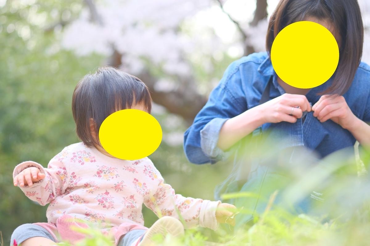f:id:narafushi:20190530215216j:plain