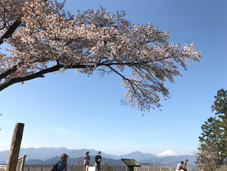 f:id:narinarissu:20170419122416j:image