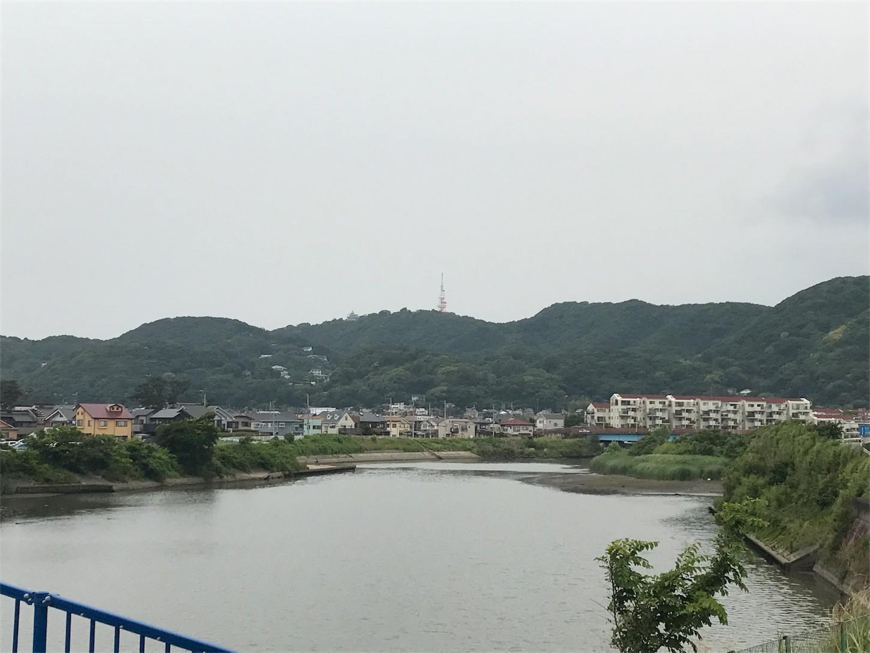 f:id:narinarissu:20170612124926j:image