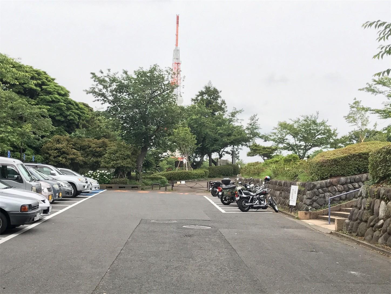 f:id:narinarissu:20170612130448j:image