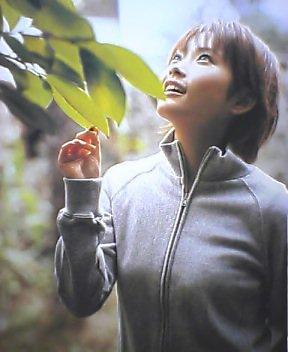 f:id:narit:20060305004926j:image:w200