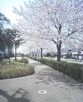 f:id:narit:20060401121647j:image:h200
