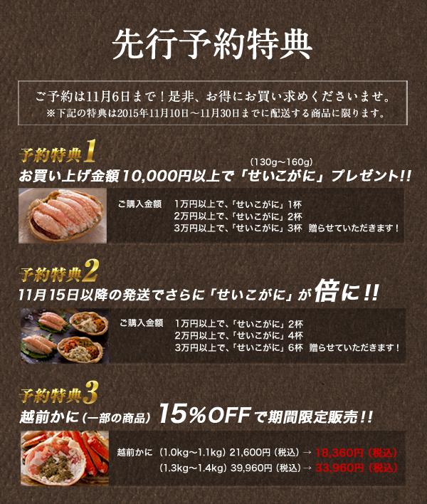 A4_DM解禁2015サイト用.jpg