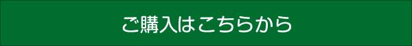 blog_meshi.jpg