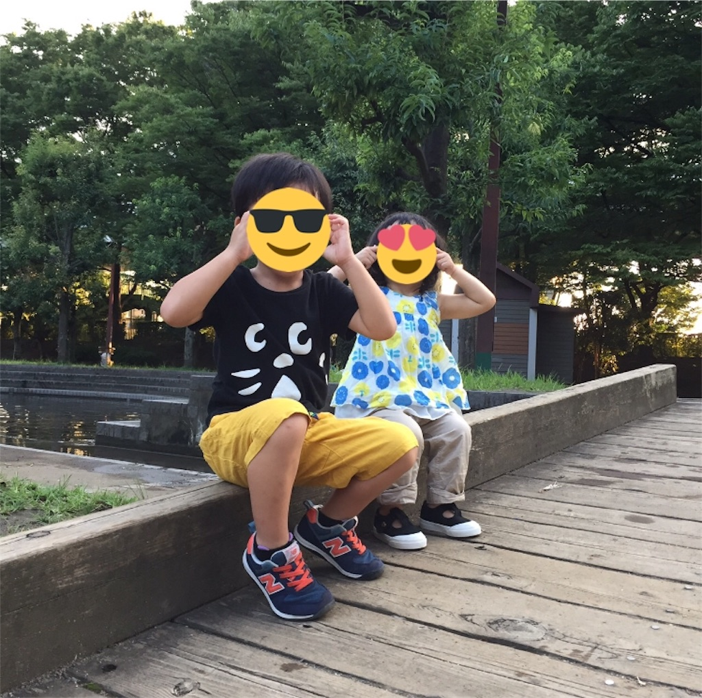f:id:naruki316:20190409113021j:image