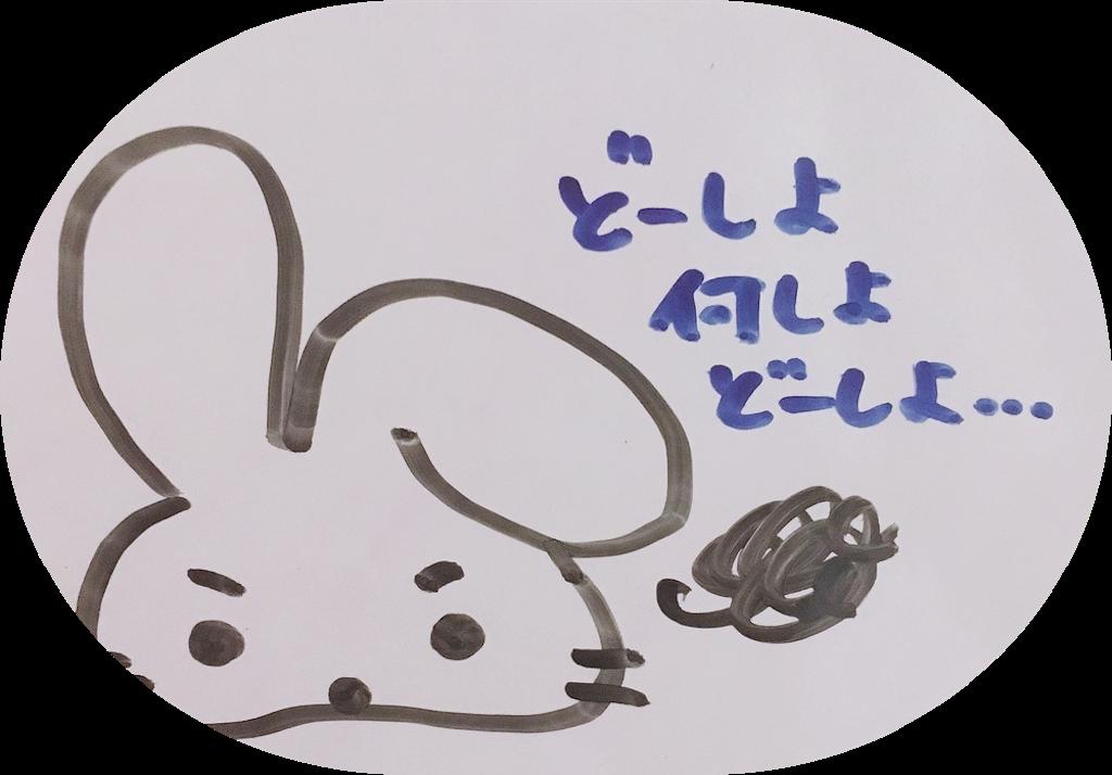 f:id:narumi087:20190212200347p:image