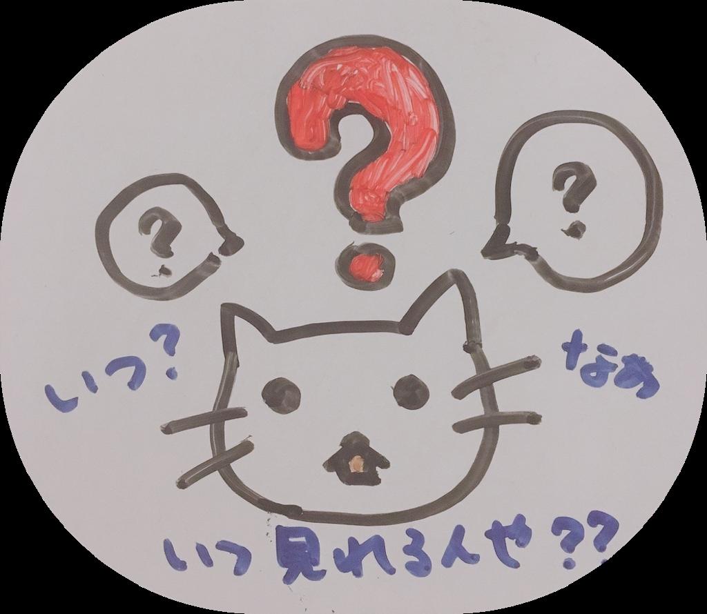 f:id:narumi087:20190217002615p:image